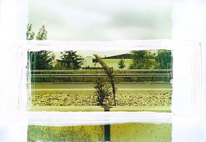 dig_panorama