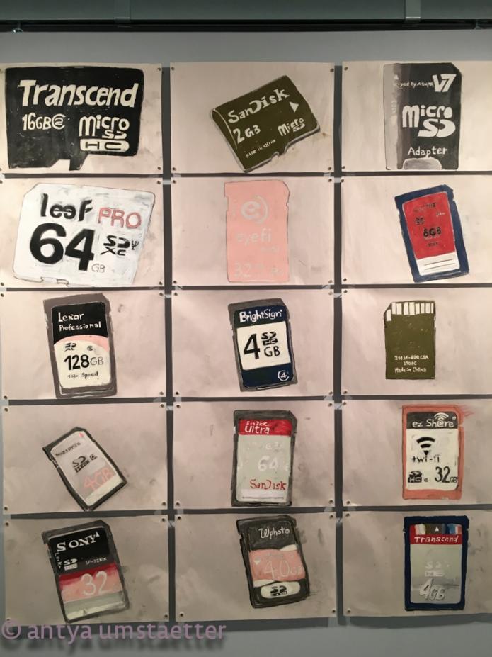 SD_Cards01